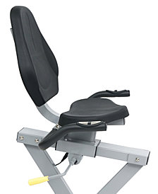 Sunny Health & Fitness Recumbent Bike with Arm Exerciser