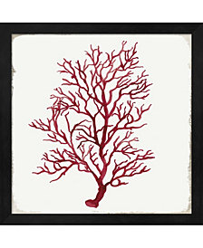 Red Coral III By Aimee Wilson Framed Art