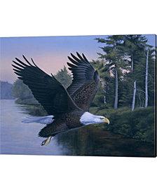 Eagle Soaring By Rusty Frentner Canvas Art