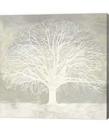 White Oak by Alessio Aprile Canvas Art