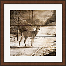 Shadows Of The Forest By Ruane Manning Framed Art