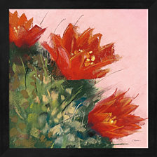 Blooming Succulent Iv By Carol Rowan Framed Art