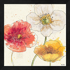 Painted Poppies Iv By Katie Pertiet Framed Art