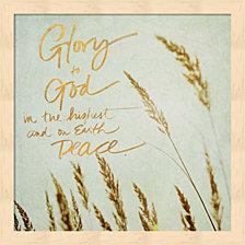 Glory to Good by Sarah Gardner Framed Art