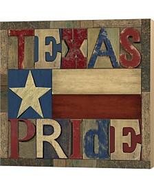 Texas Printer Bloc2 By Tara Reed Canvas Art