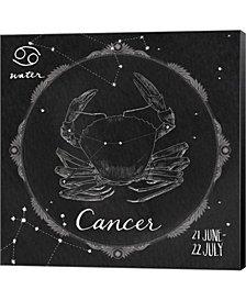 Night Sky Cancer By Sara Zieve Miller Canvas Art