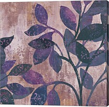 Viola Ii By Posters International Studio Canvas Art