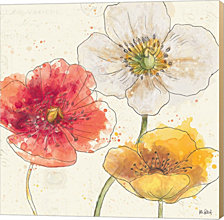 Painted Poppies IV by Katie Pertiet Canvas Art