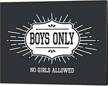 Boys Only Sunburst Cool Gray Background by Color Me Happy Canvas Art