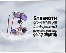 Strength Grows - Flowers In Snow Color By Color Me Happy Canvas Art