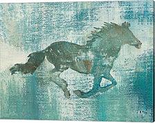 Mustang Study by Studio Mousseau Canvas Art