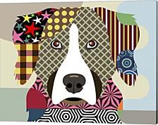 Bernese Mountain Dog By Lanre Adefioye Canvas Art