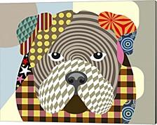 English Bulldog By Lanre Adefioye Canvas Art