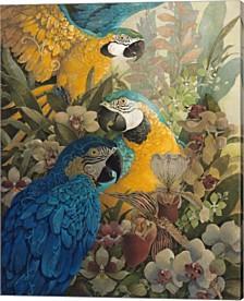 Amazon By David Galchutt Canvas Art