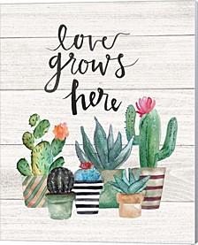 Love Grows Here By Jo Moulton Canvas Art