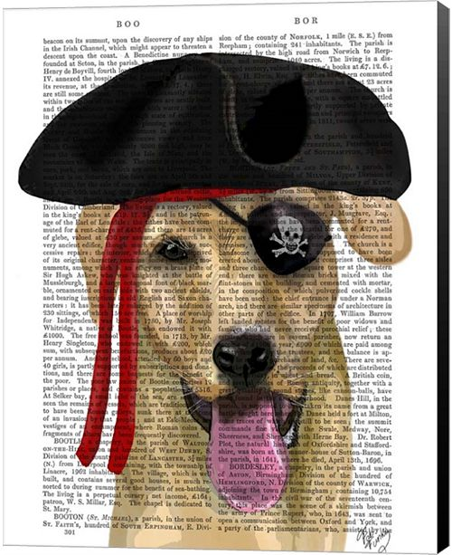 Metaverse Yellow Labrador Pirate By Fab Funky Canvas Art