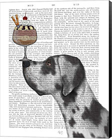 Great Dane, Harlequin, Ice Cream By Fab Funky Canvas Art