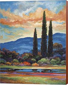 The Heart Of Provence by John Zaccheo Canvas Art