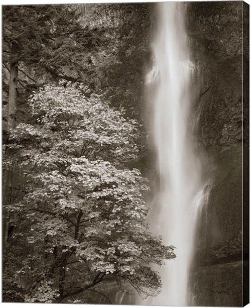 Metaverse Multnomah Falls By Alan Majchrowicz Canvas Art