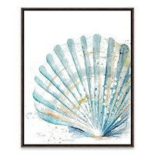 Clam Shell Framed Printed Canvas