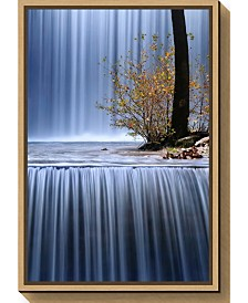 Amanti Art Autumn Interlude by Mary Kay Canvas Framed Art