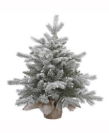 Vickerman 18 inch Frosted Sable Pine Artificial Christmas Tree Unlit