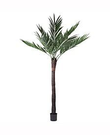 "96"" Artificial Kentia Palm"