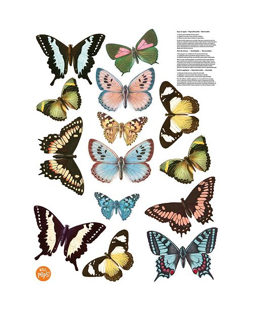 Brewster Home Fashions Spread Your Wings Wall Art Kit
