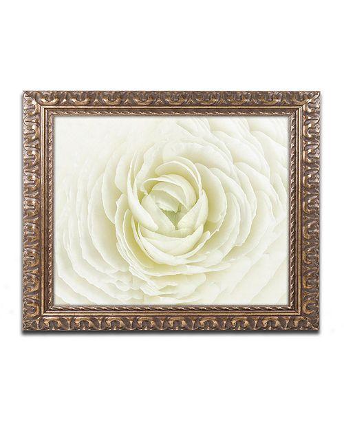 "Trademark Global Cora Niele 'White Persian Buttercup' Ornate Framed Art, 11"" x 14"""