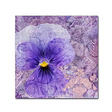 Cora Niele 'Viola - Secret Love' Canvas Art