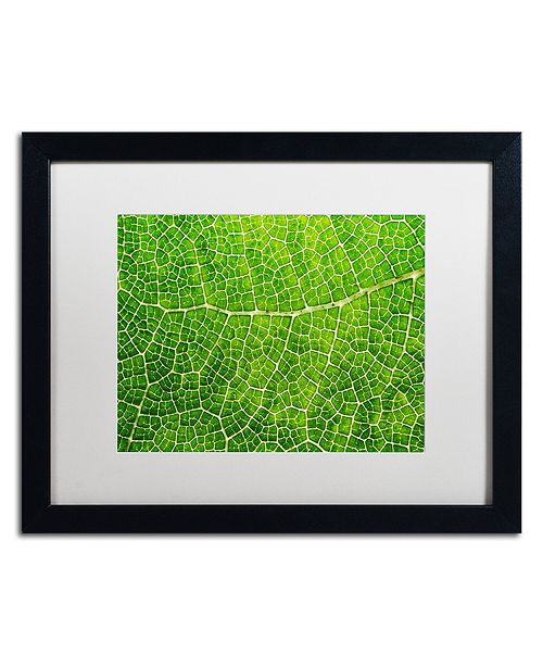 "Trademark Global Cora Niele 'Green Leaf Texture' Matted Framed Art, 16"" x 20"""