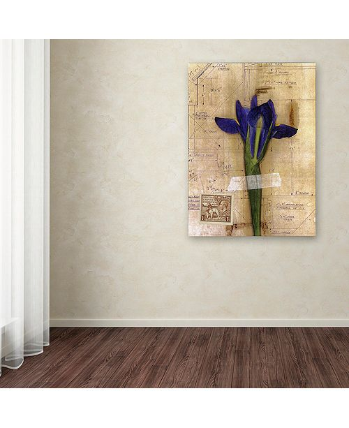 "Trademark Global Nick Bantock 'Iris Plan' Canvas Art, 14"" x 19"""