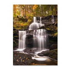 "Michael Blanchette Photography 'Autumn Horsetails' Canvas Art - 24"" x 32"""