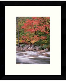 Amanti Art Autumn Along Swift River, White Mountains National Forest, New Hampshire Framed Art Print