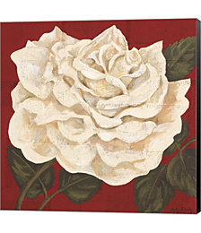 Rosa Blanca Grande I by Judy Shelby Canvas Art