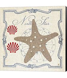 Pacific Starfish by Studio Mousseau Canvas Art