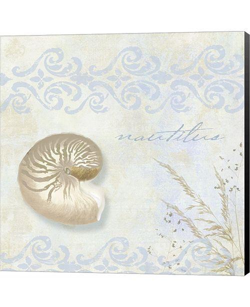 Metaverse She Sells Seashells I by Color Bakery Canvas Art