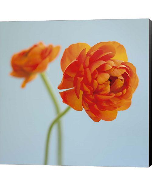 Metaverse Orange Delight I by Flowerphotos Canvas Art