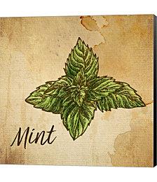 Mint on Burlap by Color Me Happy Canvas Art