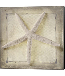 Starfish by Quote Master Canvas Art