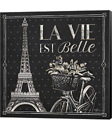 Vive Paris VI by Janelle Penner Canvas Art