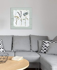 """iCanvas """"Pressed Flowers On Shiplap II"""" by Carol Robinson Gallery-Wrapped Canvas Print"""
