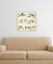"""""""Adoration of the Magpie Music"""" by Avery Tillmon Gallery-Wrapped Canvas Print (26 x 26 x 0.75)"""
