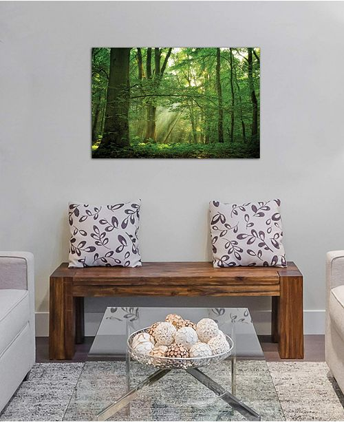 "iCanvas ""Breathe"" by Lars van de Goor Gallery-Wrapped Canvas Print (26 x 40 x 0.75)"