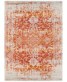 "Surya Harput HAP-1019 Burnt Orange 3'11"" x 5'7"" Area Rug"