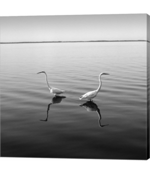 2 Herons by Moises Levy Canvas Art