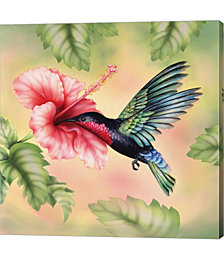 Purple-Throated Carib by Rosiland Solomon Canvas Art