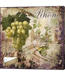 Wine Country VI by Color Bakery Canvas Art