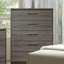 Classy Contemporary Style Wooden Chest, Gray