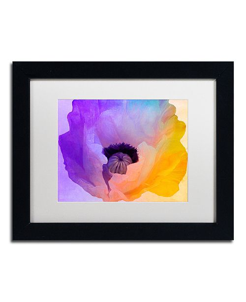 "Trademark Global Color Bakery 'Poppy Gradient Iii' Matted Framed Art, 11"" x 14"""
